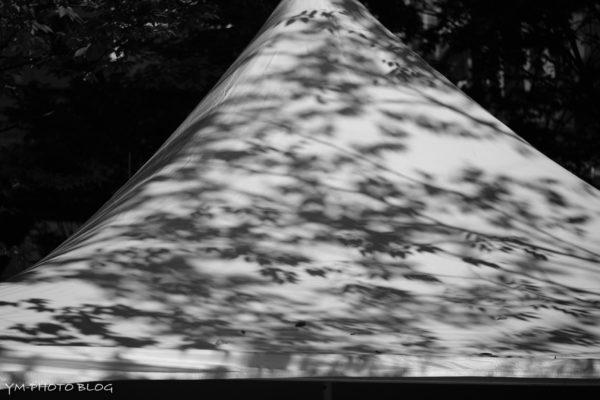 テントの屋根