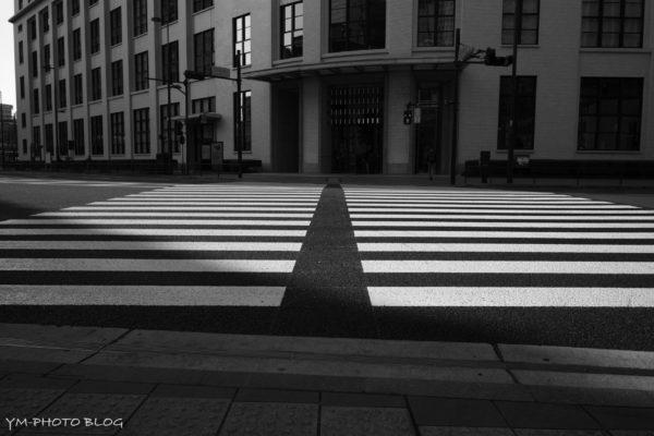 KITTE横断歩道