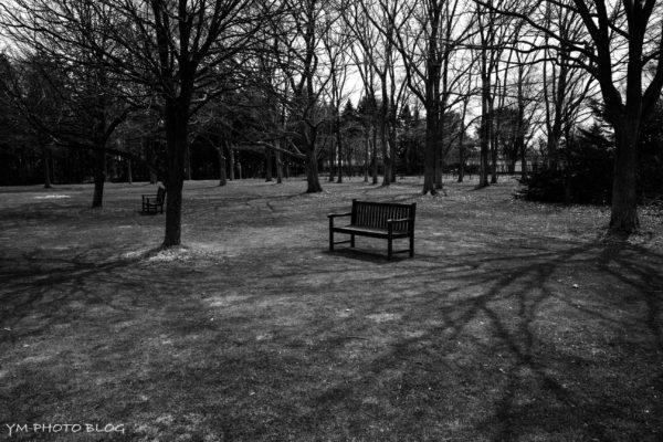 公園、ベンチ
