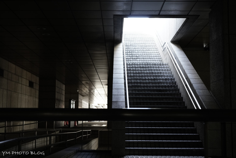 新宿の光と影