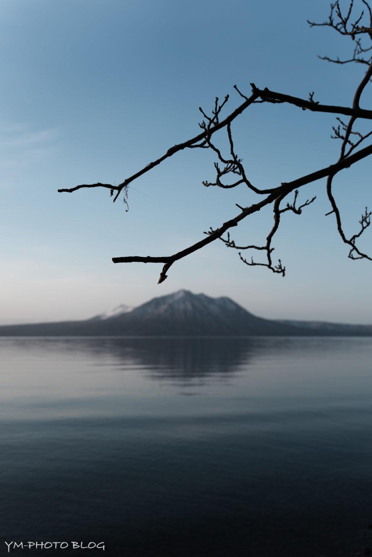 支笏湖・枝